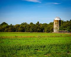 Tuscaloosa Countryside