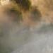 Mist Over the Avon