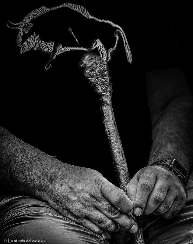 El cayado de José María Galán. De la serie Las manos del bosque.