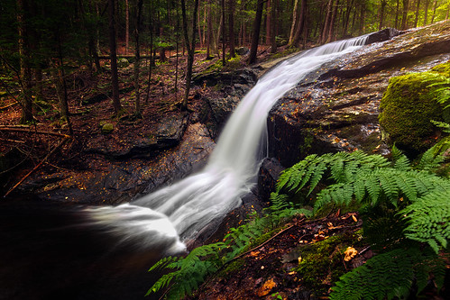 ashfield cascade chapel brook falls connecticut photographer d750 fall forest landscape long exposure massachusetts nature nikon northeast outdoor outdoors park river rock september stone stream tree usa beautiful cascading cataract creek digital drop flow flowing fluid fresh freshness motion natural north america overcast powerful pure ripple scenery scenic speed splash torrent tourism travel water waterfall wet