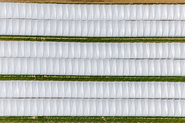 Foil Greenhouses