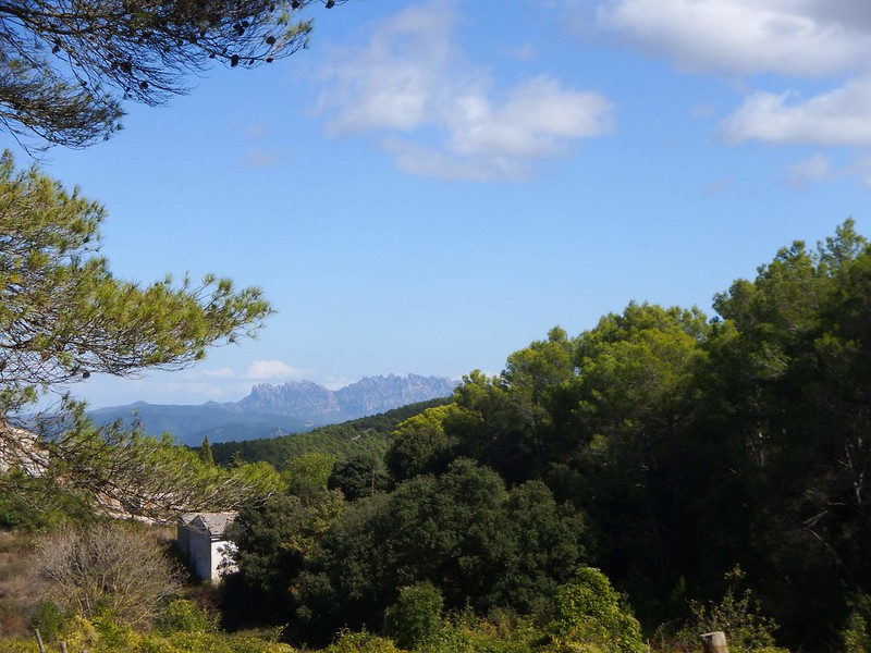La Serra del Bolet