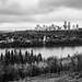 Black Autumn, Edmonton