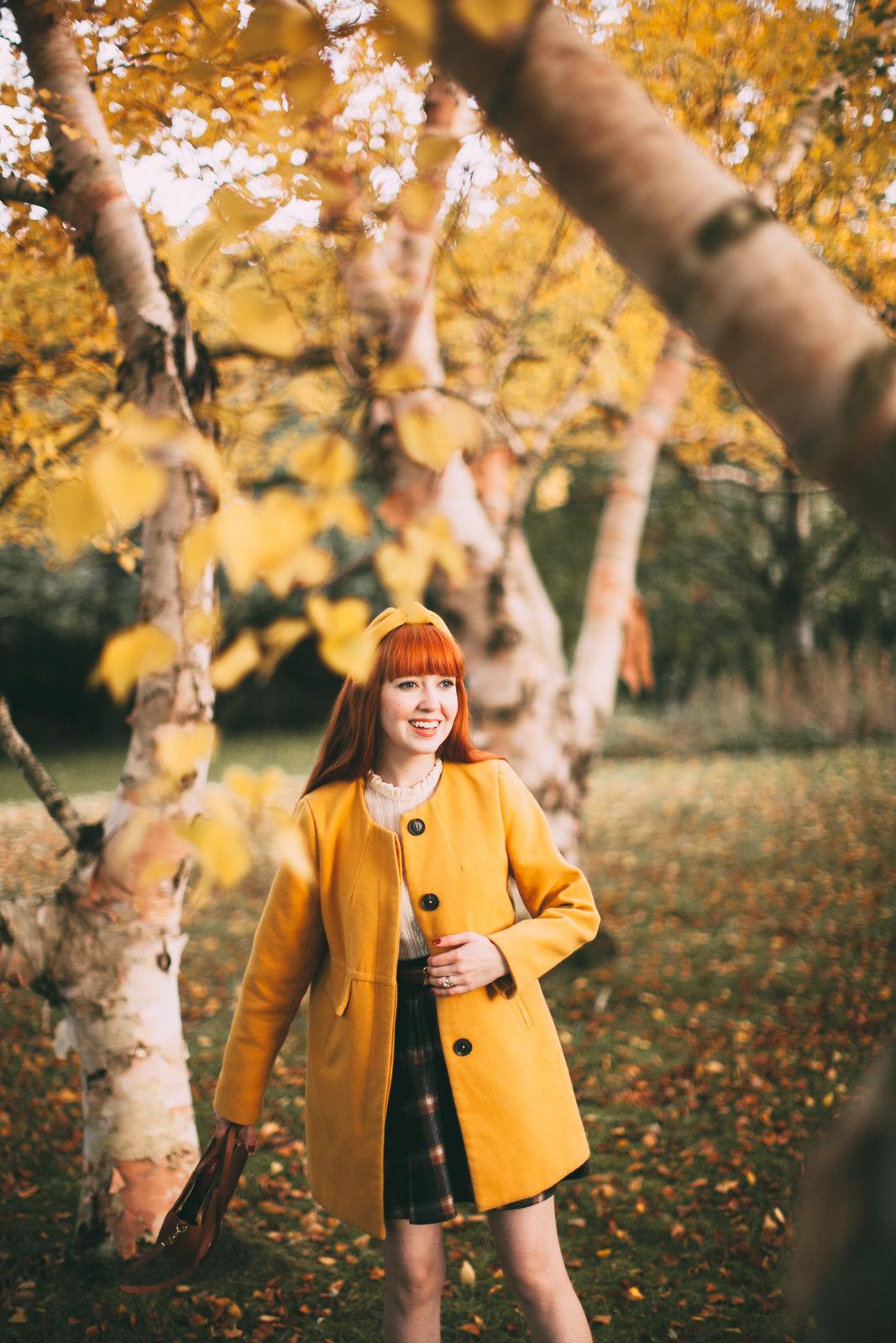 birch trees-2
