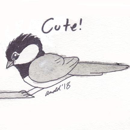 10.7.18 - Chickadee