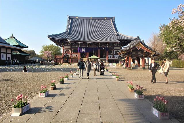 ikegami027