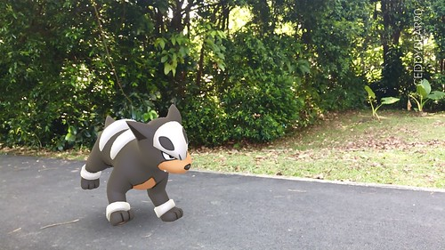 228 Houndour (position=left)