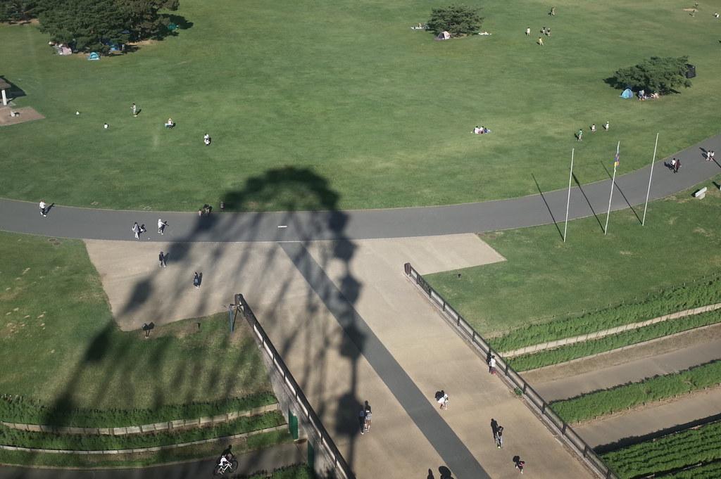 Shadow of the big wheel