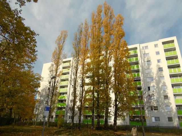 Herbst, Panasonic DMC-SZ10