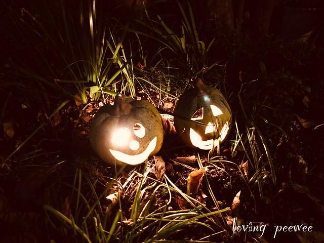 Halloween-31