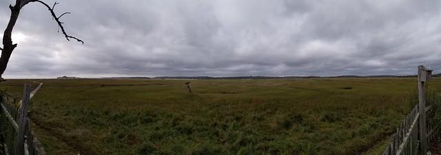 Last morning on the marsh
