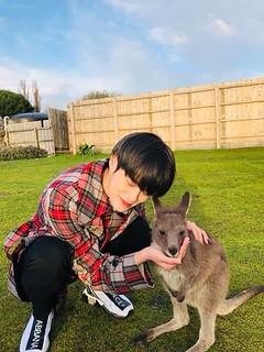 daehwi_with_kangaroo
