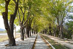 The way to Ephesus