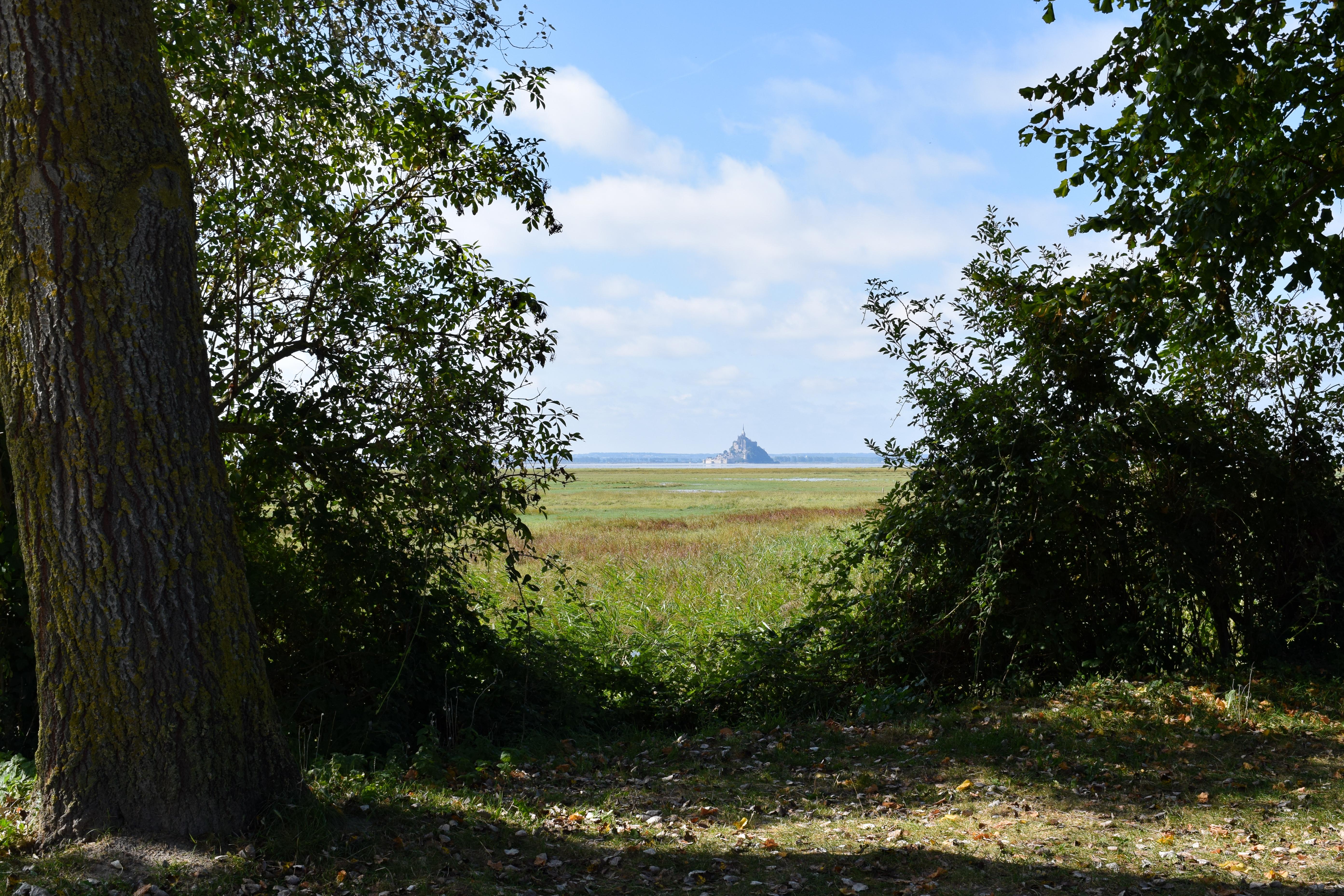 Le Baie de Mont St Michel