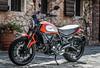 Ducati SCRAMBLER 800 Icon 2019 - 21