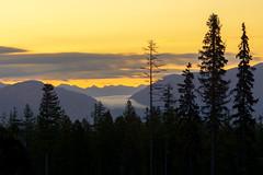 Whitefish Sunrise