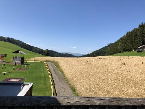 2018.07.19 012 Wipfelwanderweg Rachau