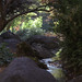 Japanese Garden by faasdant