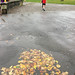 2018-10-13 (Day 286) Parkrun In The Rain