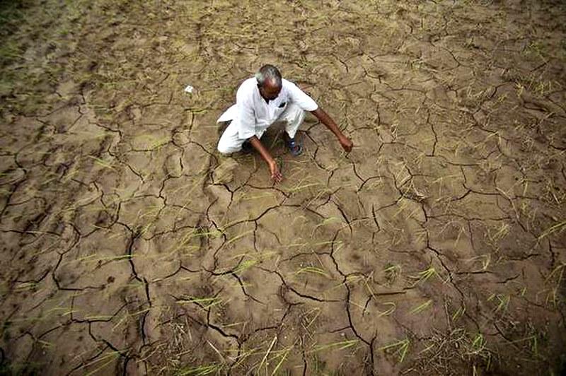 ग्लोबल वार्मिंग का प्रभाव
