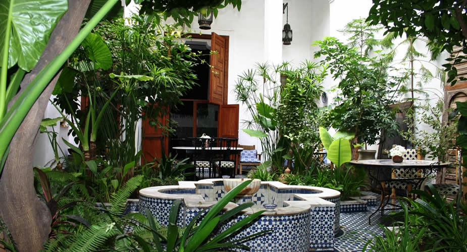 Where to stay in Fez, Morocco? Riad Lune et Soleil | Mooistestedentrips.nl