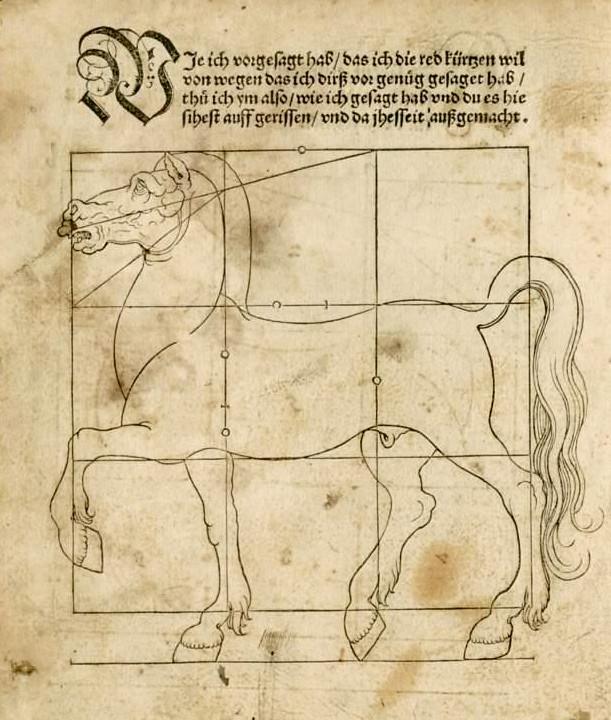 beham horse