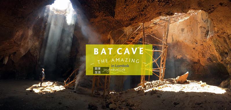 蝙蝠洞封面2