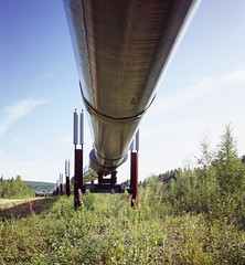 Alaska Pipeline. Original image from Carol M. Highsmith's America, Library of Congress collection. Digitally enhanced by rawpixel.