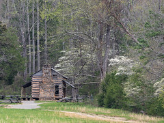 IMGPJ06421C_Fk - Great Smoky Mountain National Park