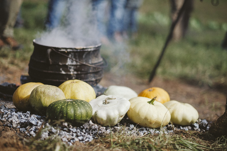 Seminole Pumpkins contributed by Rufus Elliot (Monacan) from the Monacan Tribal Garden. The pumpkins were coal-roasted and then added to the corn soup.  11/17/2018 Photo credit: Ézé Amos