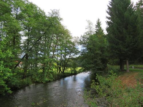 20170928 01 382 ostbay Brücke Bach Herbst Wald Blätter
