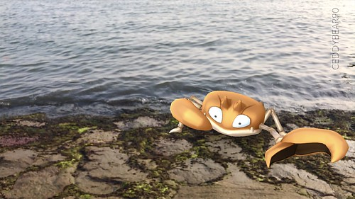 098 Krabby (position=right)