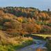Dovecote View ( Landscape )