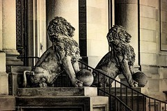 Lions On Guard . . . #lions #sculpture #audobonterrace #washingtonheights #lightandshadow #shadowplay #hispanicmuseum #uptownmanhattan #newyorkcity #chrislord #chrislorddotnyc #pixielatedpixels #nycphotographer #creativeimages #photographyisart #thosestre
