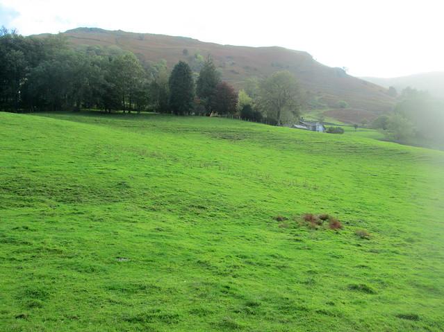 farmland, outside Grasmere
