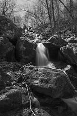 Dark Hollow Black and White Falls