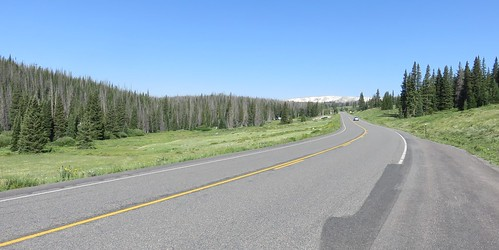 Medicine Bow National Forest (Albany County, Wyoming)