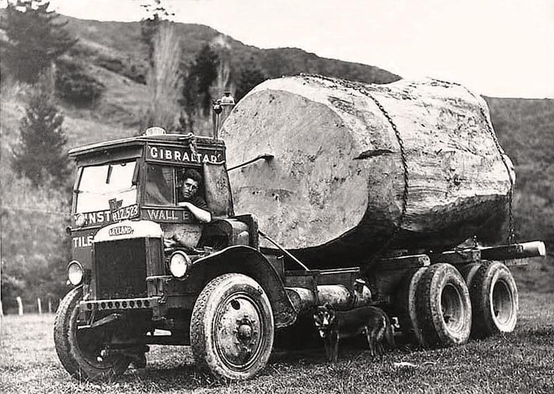 Leyland logging truck