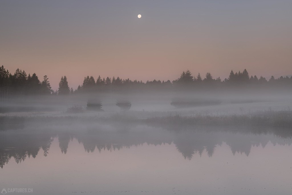 Moon over the swamp - Wchseldornmoos