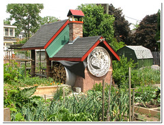 community garden_5215