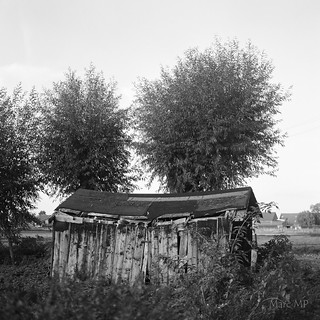 Schuppen (Shed) I