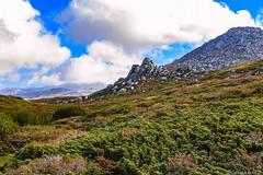 Le plateau du Cuscione en automne-001