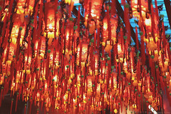 each lantern shinning those believers' wishes