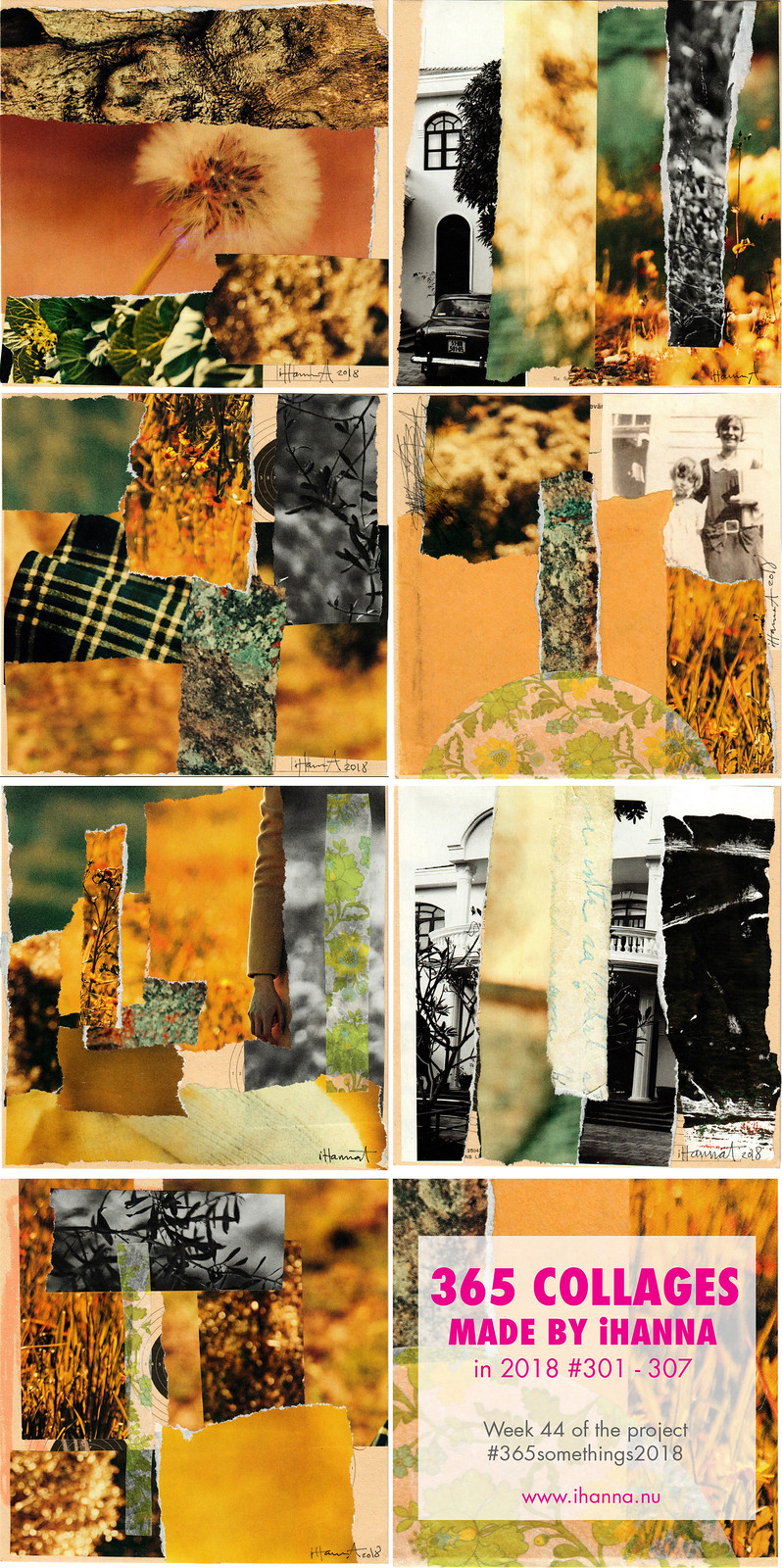 iHanna's 365 Collages in 2018 - Week 44 #365somethings2018