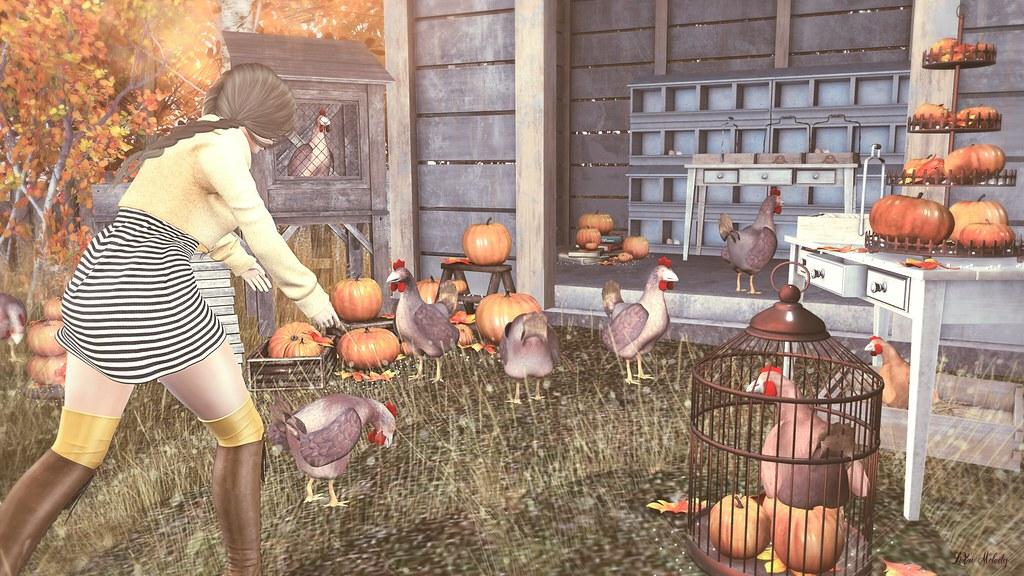 #155 LiZu's barnyard Halloween