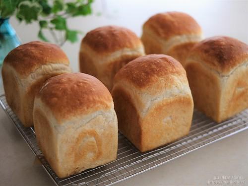 ハナマンテンの食パン 20181013-DSCT3918-1