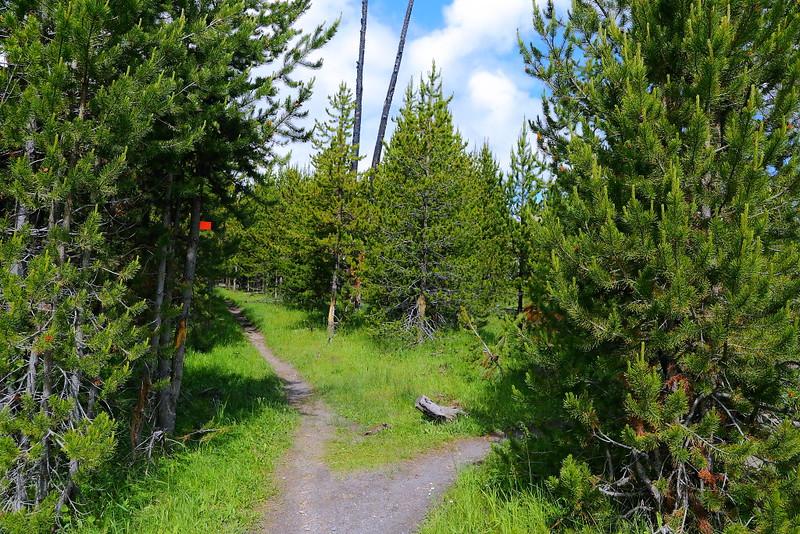 IMG_7810 Fairy Falls Trail