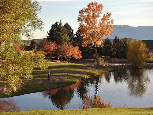 Reflection pond and Fall foliage...