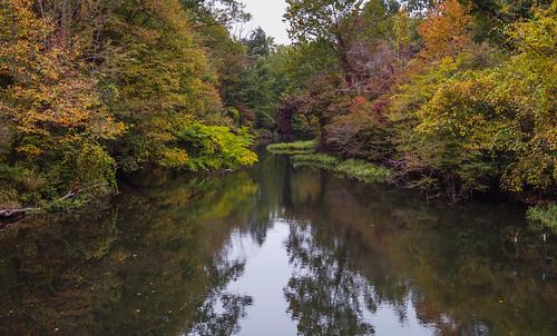 leonidas michigan nottawacreek stjosephcounty us unitedstates autumn creek fall gloomy overcast river