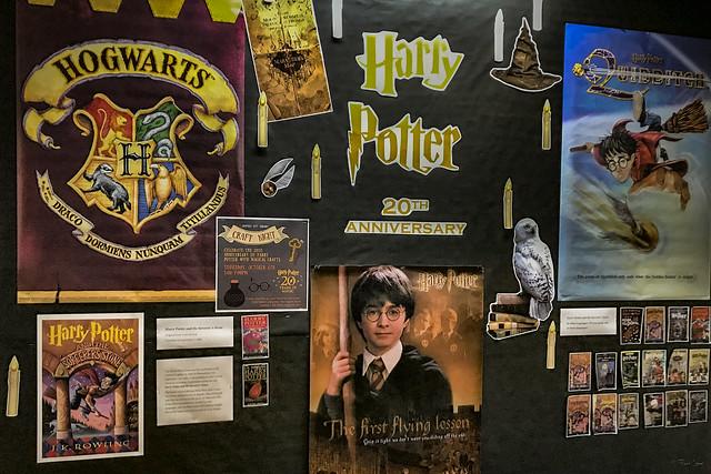 Downey City Library Harry Potter